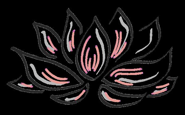 Lotus-Flower_pink_transparency